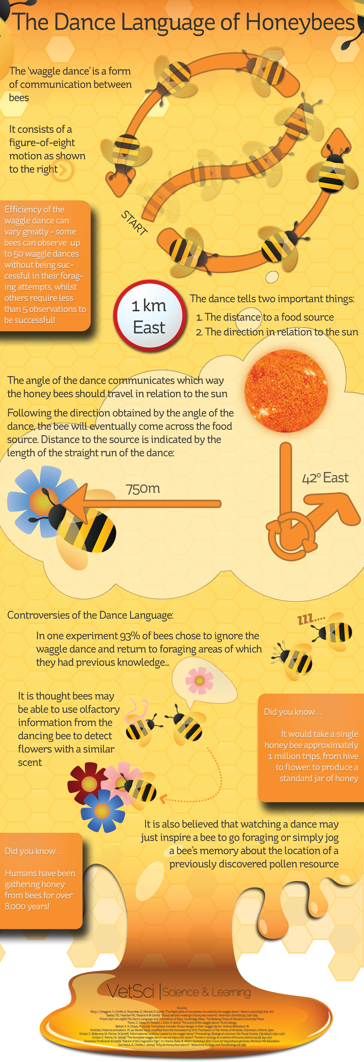 dance language of honey bees web The Dance Language of Honeybees infographics
